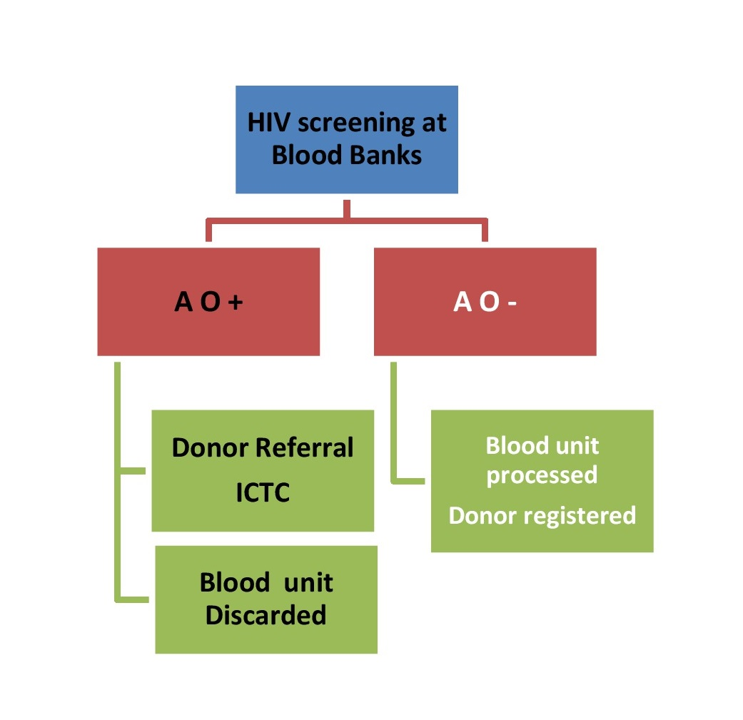 Blood Transfusion Services
